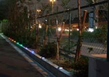 01.S11R-Japan.JPG